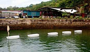 Mini-boats for classes